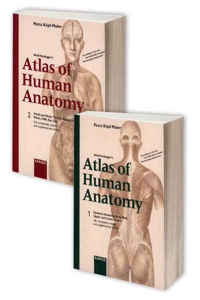 Petra Köpf-Maier - Wolf-Heidegger's Atlas of Human Anatomy 1-2