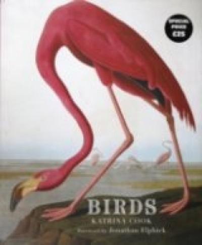 Katrina Cook - Birds
