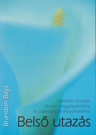 Brandon Bays - Sólyom Ildikó  (Szerk.) - Belső utazás
