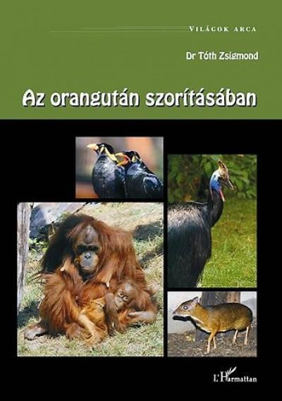 - Az orangután szorításában