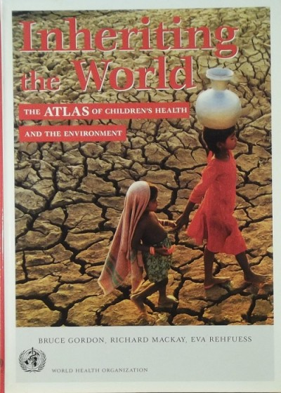 Bruce Gordon - Richard Mackay - Eva Rehfuess - Inheriting the World