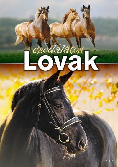 - Csodálatos lovak