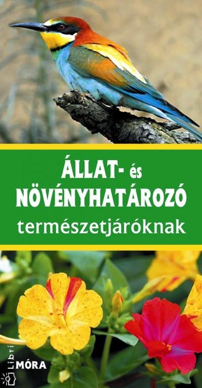 Wilhelm Eisenreich - Alfred Handel - Ute E. Zimmer - Állat- és növényhatározó természetjáróknak