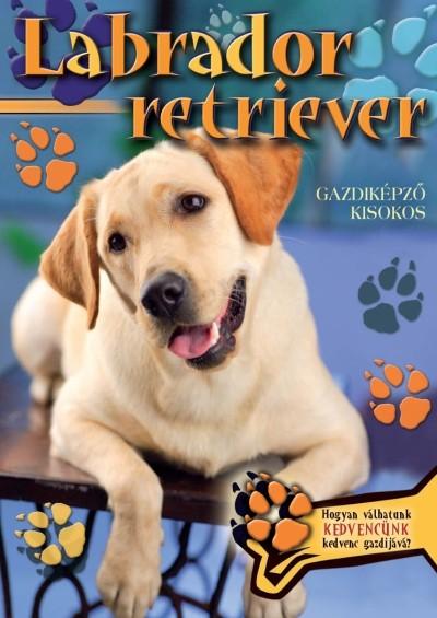 - Labrador retriever