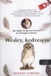 Stacey O'brien - Wesley, kedvesem