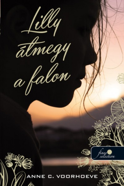 Anne-Charlotte Voorhoeve - Lilly átmegy a falon